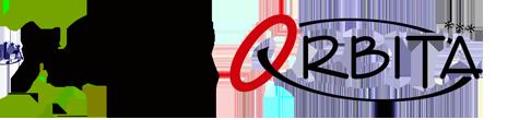 www.orbita.pl